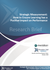 Strategic Measurement-BHG Thumbnail