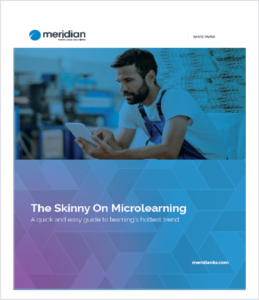 WP_Skinny On Microlearning_Thumbnail (2)